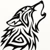anomalous52's avatar