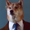 anonto52's avatar