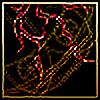 Antarel's avatar