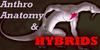 AnthroAnatomyHybrids