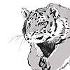 anushenvishva's avatar