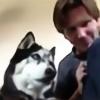 AOKStudio's avatar