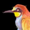 Apiaster's avatar