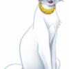 apotoy's avatar