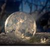 aprilstar27's avatar