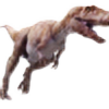 aquasaurus's avatar