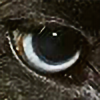 aquasea's avatar
