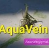AquaVein's avatar