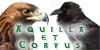 Aquilla-et-Corvus