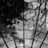 araki-reina's avatar