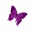 araleke's avatar
