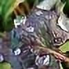 Aranni's avatar