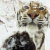 Arcanummagica's avatar