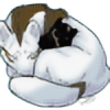 ArcticLightsKennels's avatar