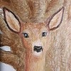 Arcuria's avatar