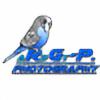 Ardgy's avatar