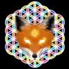ArielFoxe's avatar