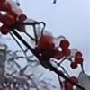 AriesRCN's avatar