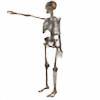 armstrongstewart's avatar