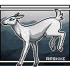 arokke's avatar