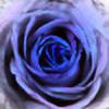 ArousedKoala's avatar