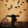 arrivalsofthebirds's avatar