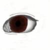 Art-lover221's avatar