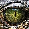 ArtByBW's avatar