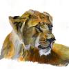 artbyellams's avatar