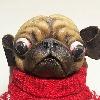 artbysamuel's avatar