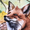 artesdajardim's avatar