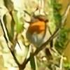Artire's avatar