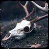 Arumniel's avatar