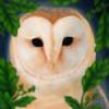 aryalynx's avatar