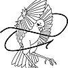 AsiaMockingbird's avatar