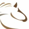 Askeboda's avatar