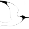 asklepiondigital's avatar