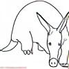 Asymptotic-Aardvark's avatar