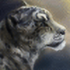 Athari's avatar