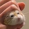 atisutomaria's avatar