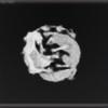 AtlasMagnum's avatar