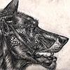 ATrenbeath's avatar