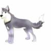 Atticus1325's avatar