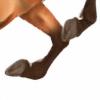 Aurora0503's avatar