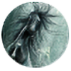 Autoile's avatar