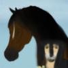 AvarairStables's avatar