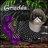 avicados's avatar
