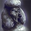 Avinger's avatar