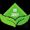 avivietnam's avatar