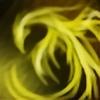 AwakenSchadow's avatar